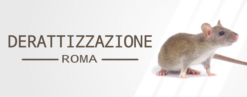 Derattizzazione-Topi-a-Roma