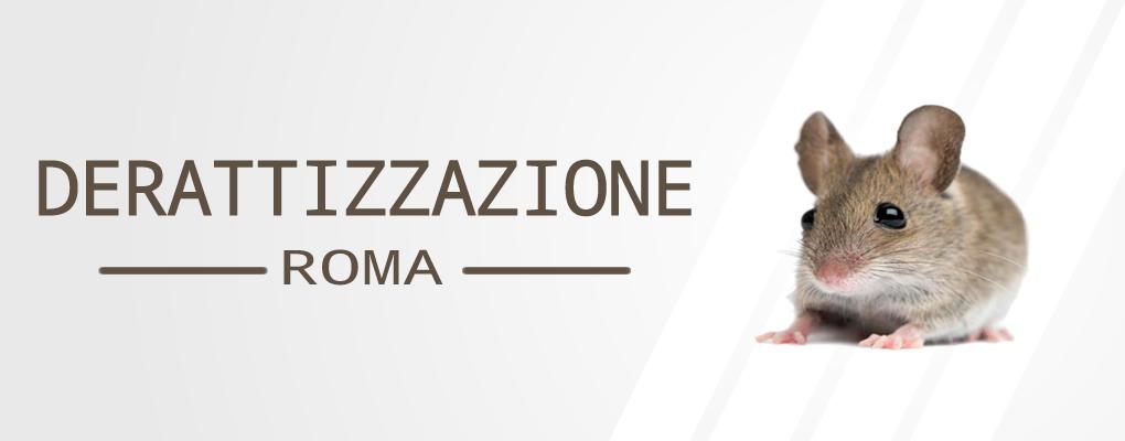 Derattizzazione Ratti Roma Centro - a Roma Centro. Contattaci ora per avere tutte le informazioni inerenti a Derattizzazione Ratti Roma Centro, risponderemo il prima possibile.