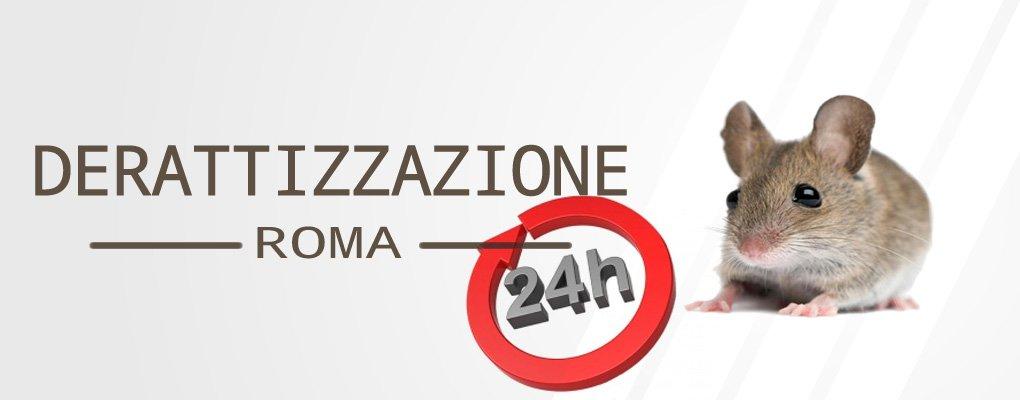 pronto intervento derattizzazione Roma